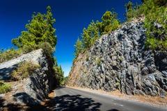 Ténérife et EL Teide Images stock
