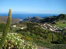 Ténérife, la vallée des montagnes d'Anaga, en bas de la ville de la La Laguna Image libre de droits
