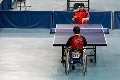 Tênis de tabela dos homens da cadeira de roda Imagens de Stock