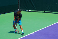 Tênis francês pro Jo-Wilfried Tsonga Foto de Stock