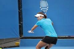 Tênis profissional no Australian 2012 aberto imagem de stock