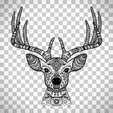 Tête à cornes de cerfs communs avec l'ornement floral Images stock
