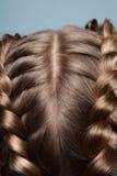Tête blonde en gros plan avec des tresses Image libre de droits
