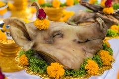 Tête bouillie de porcs Images stock