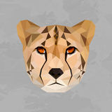 Tête colorée géométrique de guépard Photographie stock libre de droits