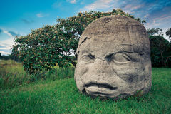 Tête colossale d'Olmec dans la ville de la La Venta, Tabasco Photographie stock