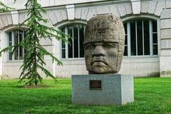 Tête colossale 4 d'Olmec près du musée d'histoire naturelle Photo stock