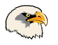 Tête d'aigle Photographie stock libre de droits