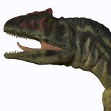 Tête d'Allosaurus Illustration de Vecteur