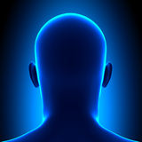 Tête d'anatomie - vue arrière - concept bleu illustration stock