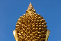 Tête d'or de Bouddha sur le fond bleu Images libres de droits