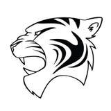 Tête d'isolement de tigre de dessin animé Photographie stock