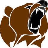 Tête d'ours Images libres de droits