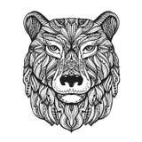 Tête d'ours ou d'ours gris d'isolement sur le fond blanc Illustration tirée par la main de vecteur avec les éléments décoratifs illustration libre de droits