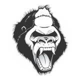 Tête d'un gorille illustration libre de droits