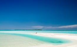 Tête d'une belle plage Photos libres de droits