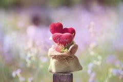 Tête dans l'amour dans la valentine naturelle Image libre de droits