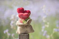 Tête dans l'amour dans la valentine naturelle Images stock