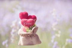 Tête dans l'amour dans la valentine naturelle Photos libres de droits