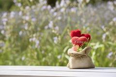 Tête dans l'amour dans la valentine naturelle Photo stock