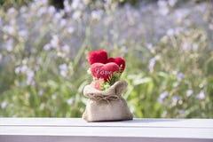Tête dans l'amour dans la valentine naturelle Photo libre de droits