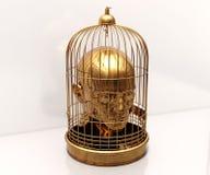 Tête dans la cage Photos stock