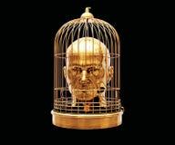 Tête dans la cage Photographie stock
