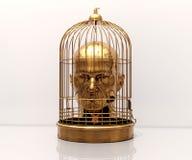 Tête dans la cage Image stock