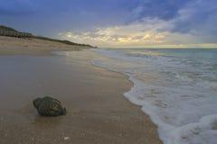Tête de Bouddha sur la plage Photo stock