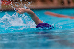 Tête de bras de rappe de nageur Photos stock