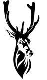 Tête de cerfs communs illustration de vecteur