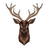 Tête de cerfs communs stylisée dans le style de zentangle Photos stock