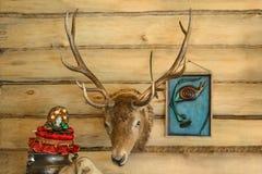 Tête de cerfs communs sur le mur Photos libres de droits