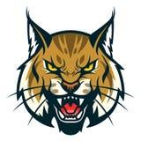 Tête de chat sauvage illustration stock