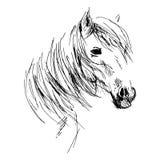 Tête de cheval de dessin de main Photo libre de droits