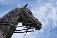 Tête de cheval en bronze photo libre de droits