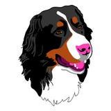 Tête de chien Image libre de droits
