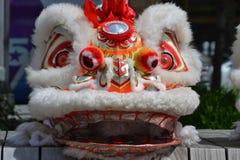 Tête de costume de dragon Images libres de droits