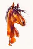 Tête de dessin du cheval Image libre de droits
