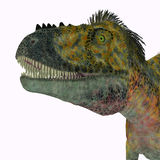 Tête de dinosaure d'Alioramus Images stock