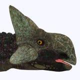 Tête de dinosaure d'Ankylosaurus Photo stock