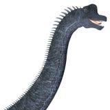 Tête de dinosaure de Brachiosaurus Photos libres de droits