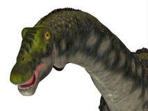 Tête de dinosaure de Diamantinasaurus illustration stock