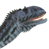 Tête de dinosaure de Majungasaurus Images libres de droits