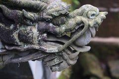 Tête de dragon Images libres de droits