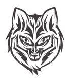 Tête de Fox Photographie stock libre de droits