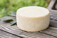 Tête de fromage de chèvre Photographie stock libre de droits