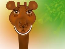 Tête de giraffe Illustration de Vecteur