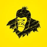 Tête de gorille Photo libre de droits