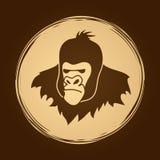 Tête de gorille Photo stock